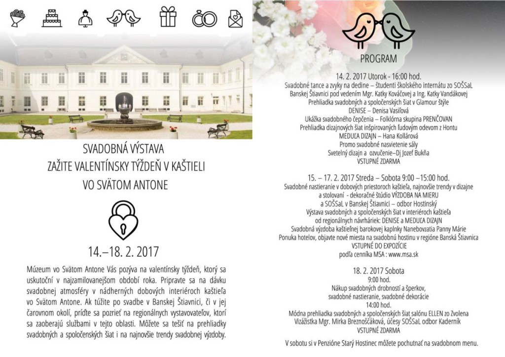 MSA valentin program